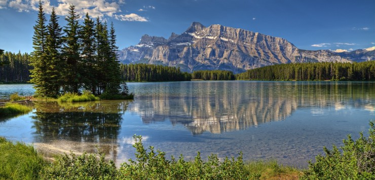 banff_park_alberta_canada_trees-wallpaper-1280x800